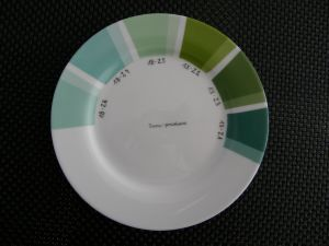 Nuanciers Plombeuses Irena Porcelaine Peinture Sur Porcelaine